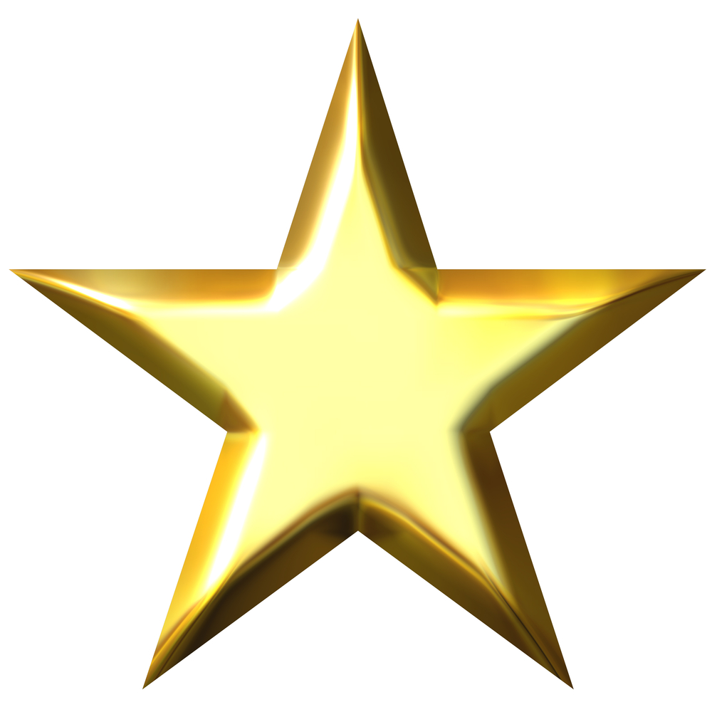 Gold Star 171 Extraordinary Lutheran Ministries
